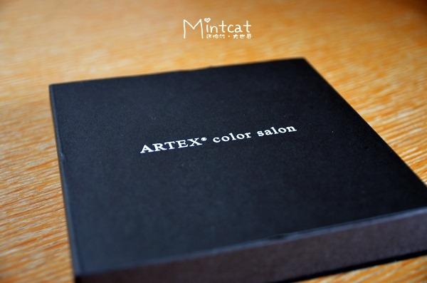 ARTEX color salon2012 (16)