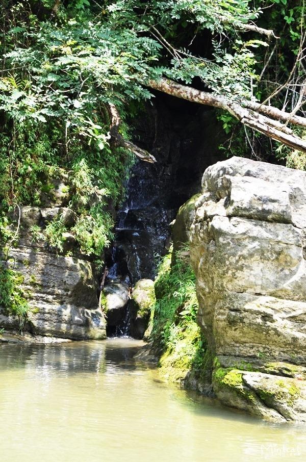 高雄美濃景點黃蝶翠谷與雙溪熱帶樹木園‧我們都應該好好愛護大自然