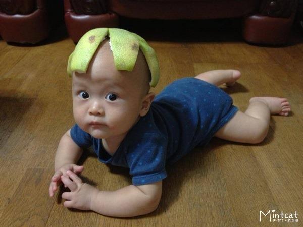 【成長日記】小熊寶0歲7個月
