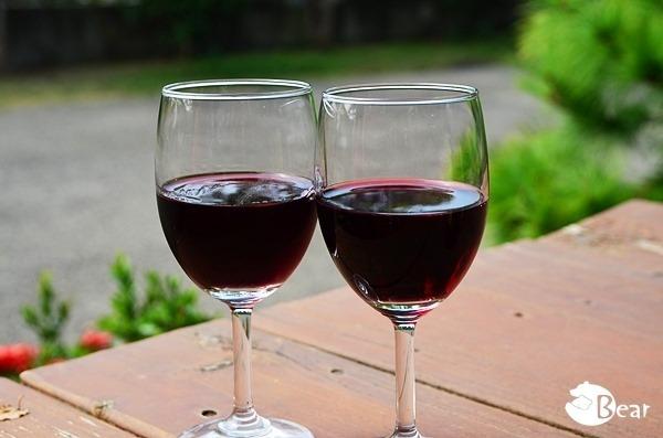 【台灣酒莊之旅】台中后里松鶴酒莊‧葡萄光廊下的微醺時光