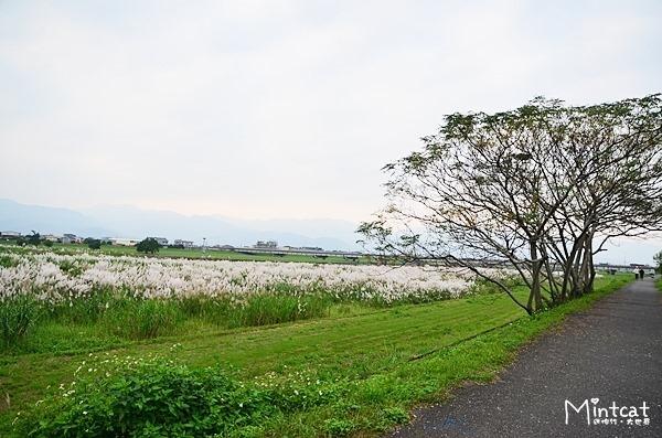 靜園民宿 (60)