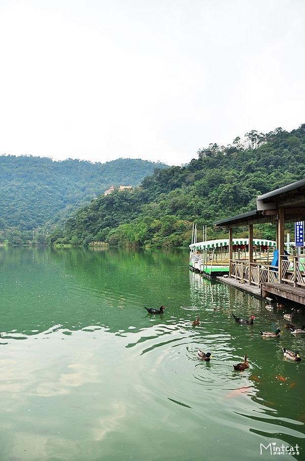 梅花湖&天ㄟ咖啡 (7)