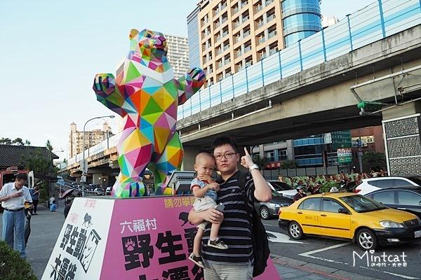 【寶寶成長日記】華山六福村野生動物大遷徙‧全台最大動物標本特展