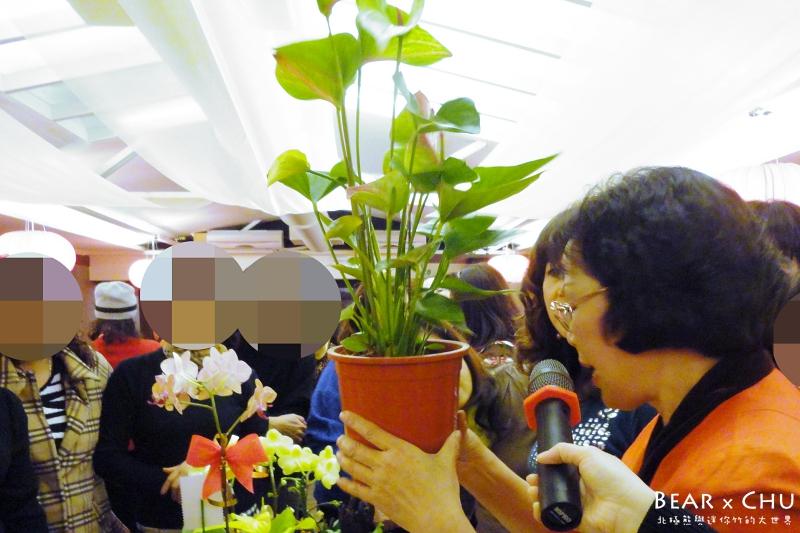 過年組合盆栽火鶴喜氣慶好年_20110120-170906.JPG