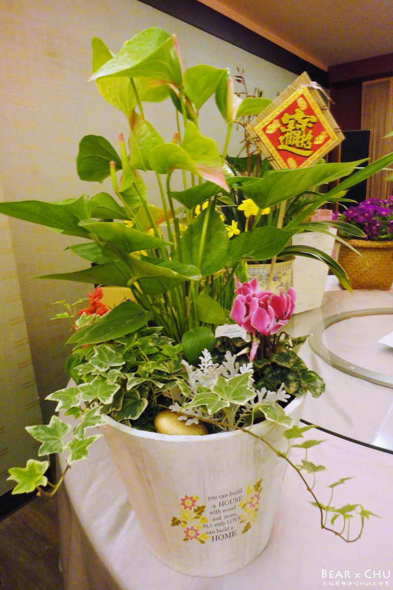 過年組合盆栽火鶴喜氣慶好年_20110121-101212.JPG