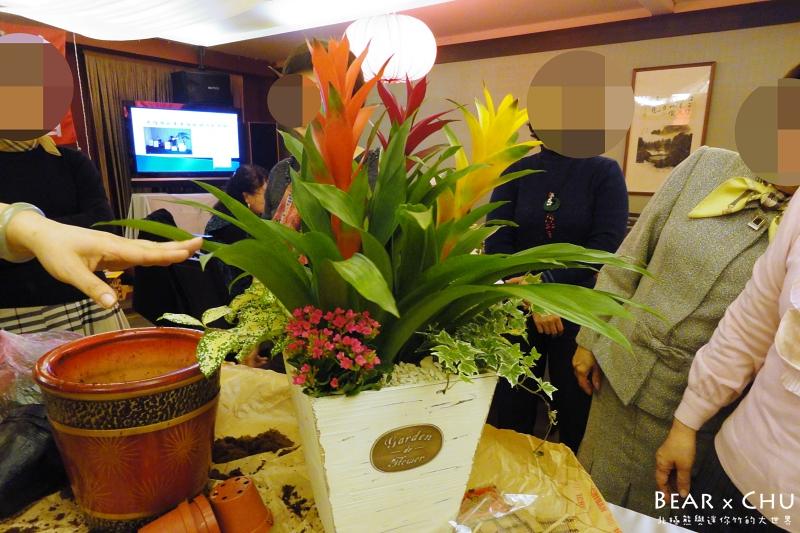 過年佈置DIY組合盆栽鳳梨_20110120-172346.JPG