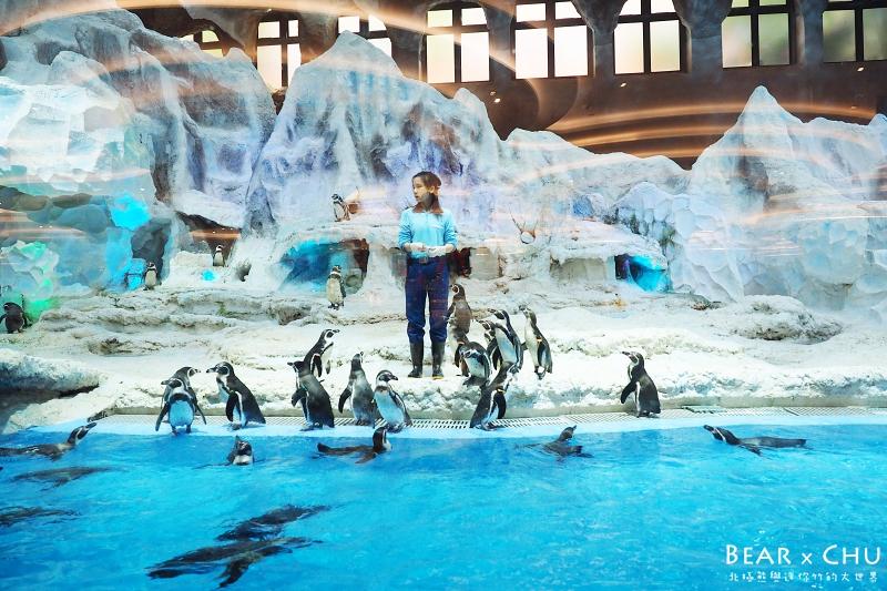 長隆海洋企鵝酒店_20170317-090852-41.JPG