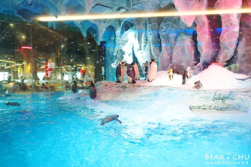 長隆海洋企鵝酒店_20170318-093406-56.JPG
