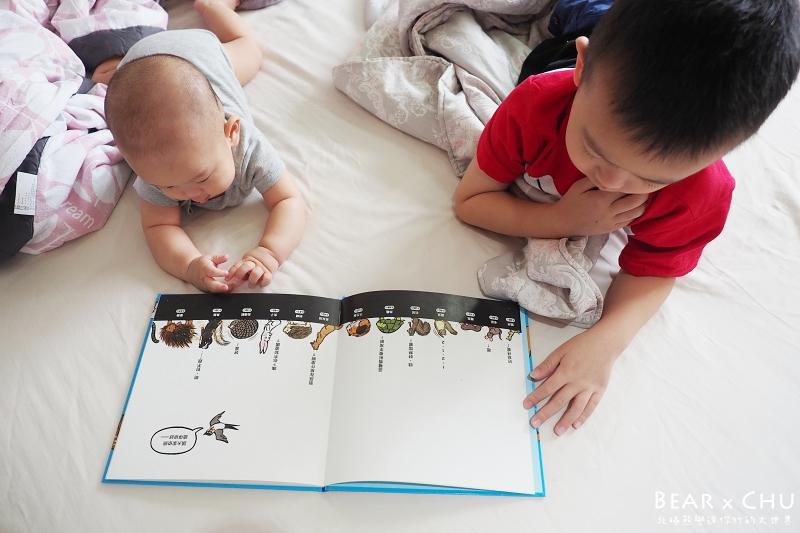 0~3歲寶寶親子共讀推薦繪本圖書・2019年教育部閱讀起步走書單